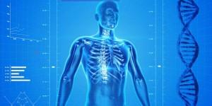 Beschwerdefrei mit dem 9 1/2-Wochen-Rückenkonzept